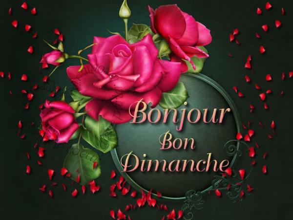 bonjour/bonsoir  de Decembre - Page 2 Dimanc11