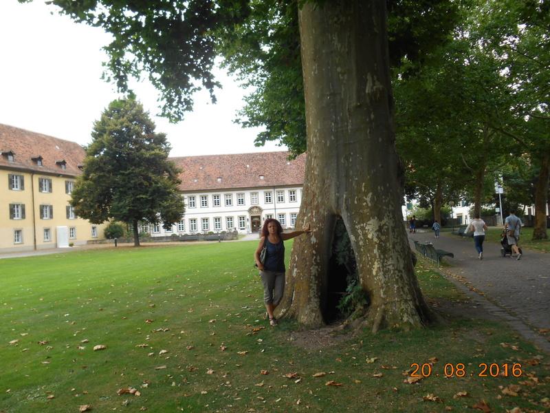 Bad Mergentheim (Germania) Dscn1514