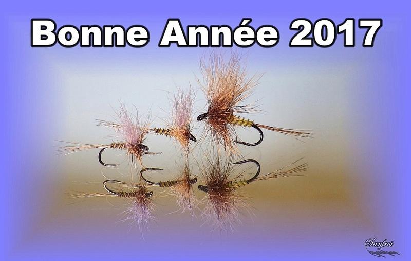 Bonne année 2017 !!!!!  Bonany10
