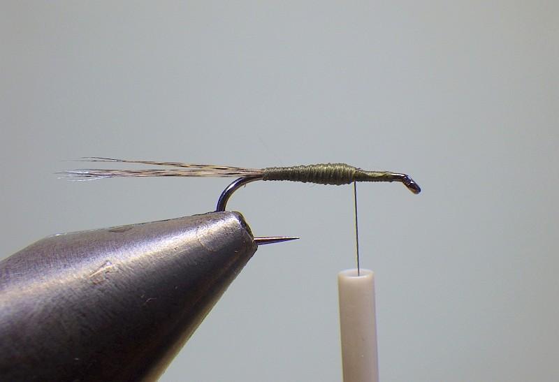 Olive Snowshoe F310