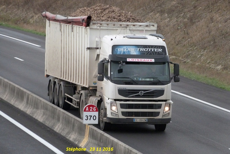 Loiseaux (Magny la Fosse 02) P1370245