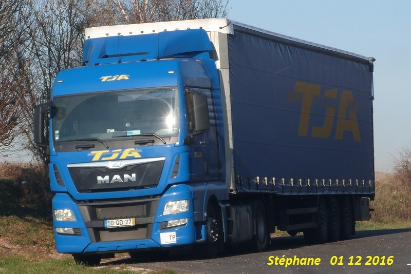 TJA  (Transportes J. Amaral) (Estarreja) P1370354