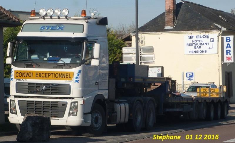 Stex (Chateauneuf sur Loire, 45) P1370357