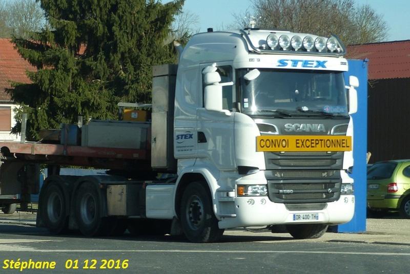 Stex (Chateauneuf sur Loire, 45) P1370358