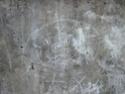 Le cochon et l'hirondelle Graffi10