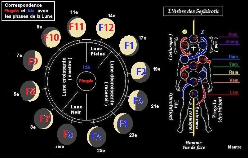 L' Alchimie des Runes et la Séphira Lune_p12
