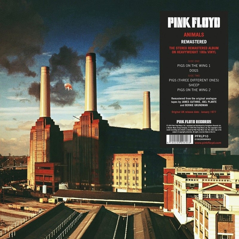 PINK FLOYD - Page 5 81wh0r10