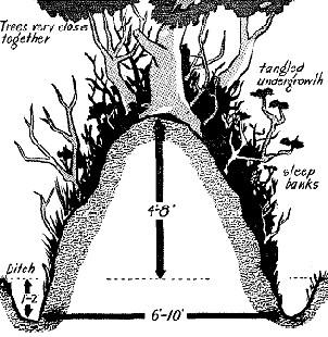 La guerre des Haies et le Hedgecutter.... Le taille Haie Normand ! Hedger10