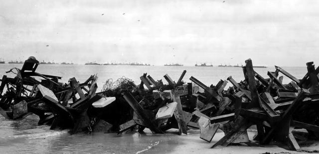 La guerre des Haies et le Hedgecutter.... Le taille Haie Normand ! Le-ser10