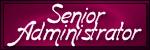 Senior Administrator