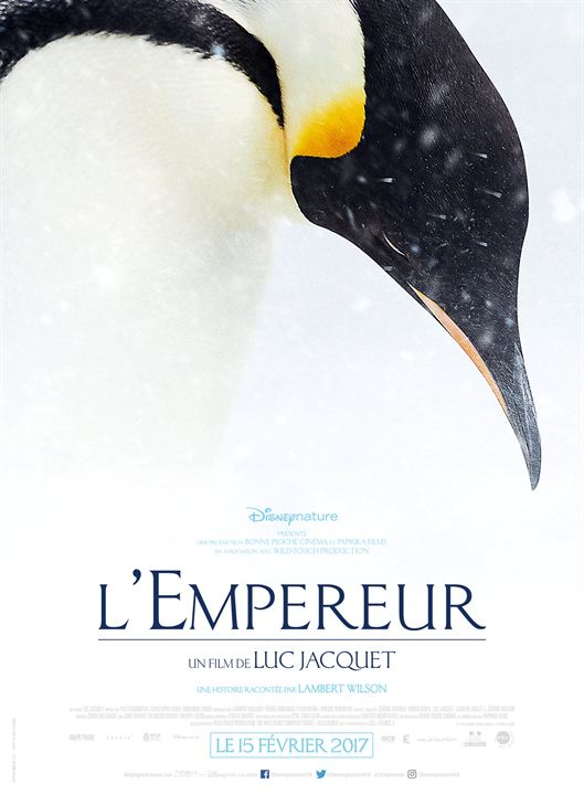 L'Empereur Réalisé par Luc Jacquet   17272310