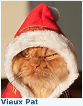 Avatar de Noël 2016 : le VOTE Captur39