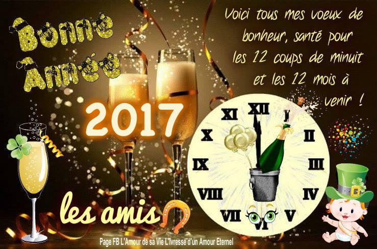 Dimanche 1er janvier 2017 Bonne-10