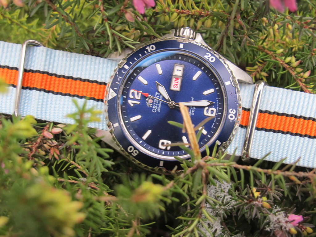 Orient Mako - tome 2 - Page 11 Img_7713