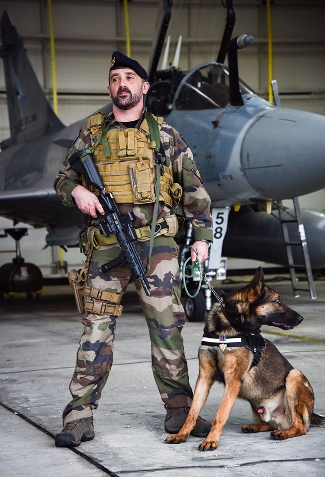 Animaux soldats - Page 6 2143