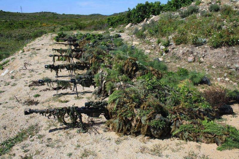 Forces armées grecques/Hellenic Armed Forces - Page 26 4110
