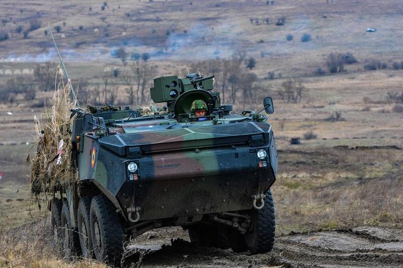 Armée Roumaine/Romanian Armed Forces/Forţele Armate Române - Page 9 6963