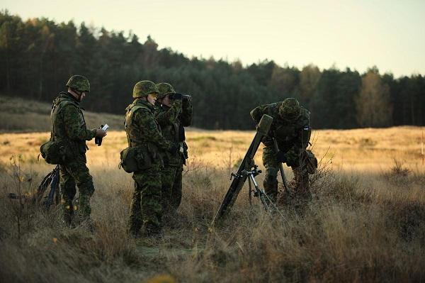 Armée Estonienne/Estonian Army - Page 3 7012