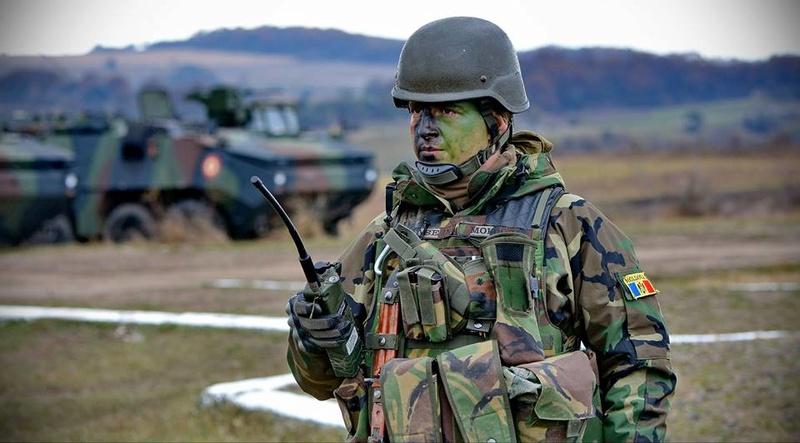 Armée Roumaine/Romanian Armed Forces/Forţele Armate Române - Page 9 7332