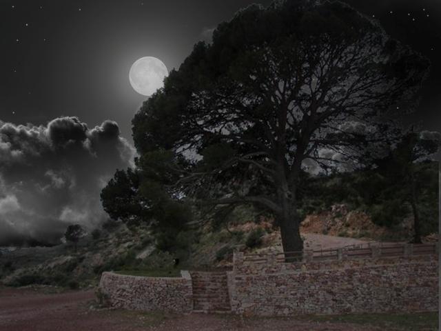 """Sábado 20 de Julio """"Nocturna a la Creueta y el Pi del Salt"""", Sierra Calderona, Náquera. Valencia Pi_del11"""
