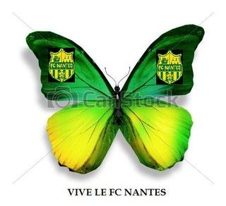 L1 . J20  Samedi 14 janvier 2017 - 20:00 Toulouse FC / FC Nantes Can-st10