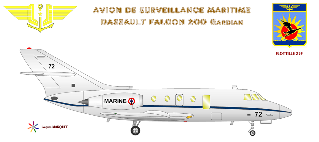 Avions de l'Aéronavale et autres Falcon10