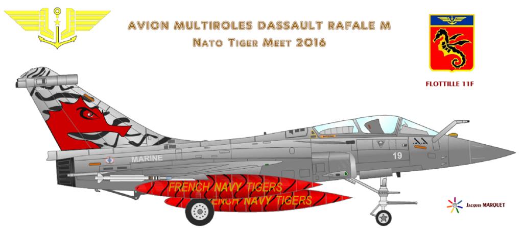 Avions de l'Aéronavale et autres Rafale10