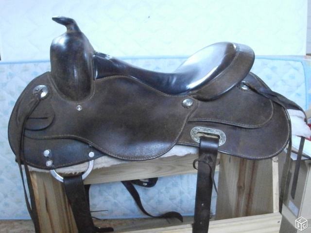 selle western cheval large Baude Photo_10