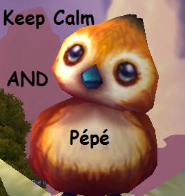 Candidature Laureline kirald Pepe10