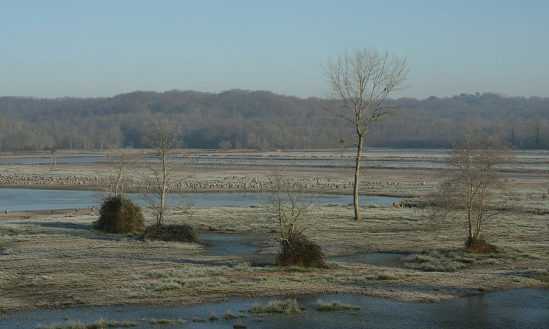 Paysages - Nature - Page 18 Img_7210