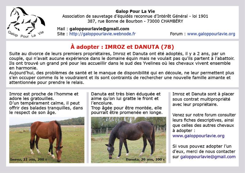 DANUTA – SF née en 1991 – annonce désactivée en l'absence de nouvelles du propriétaire 2017_131