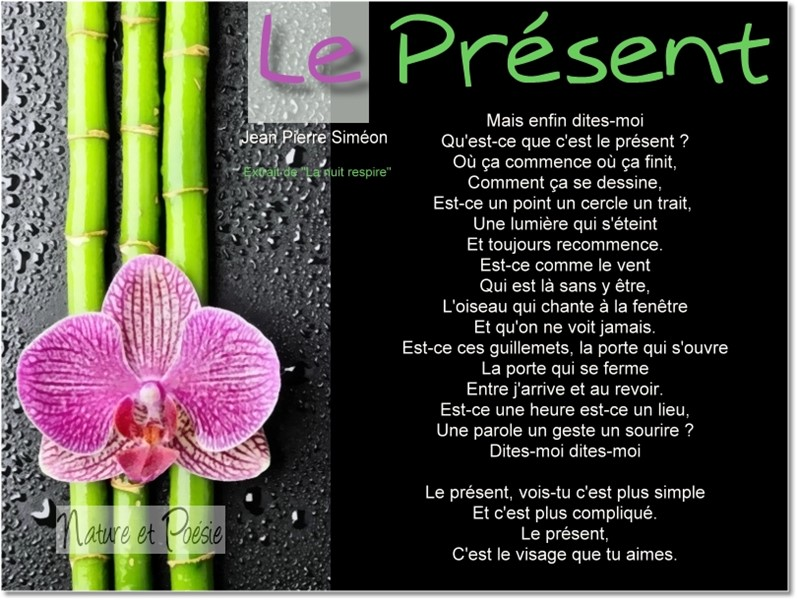 Présent Le_pry10