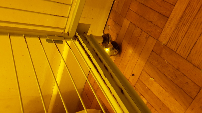 Cage Tower 30 € (76 ROUEN) 20161110