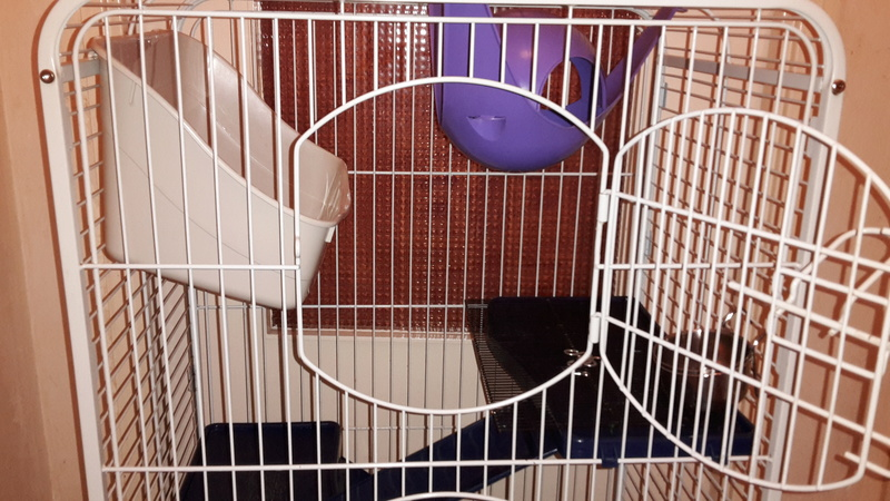 Cage Tower 30 € (76 ROUEN) 20161114