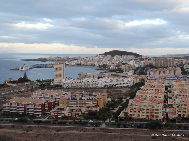 Walk from Los Cristianos to Palm Mar. 09-dsc10