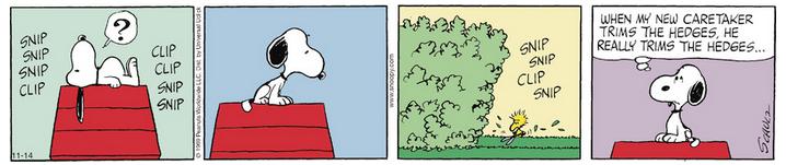 Peanuts. - Page 5 Captur74