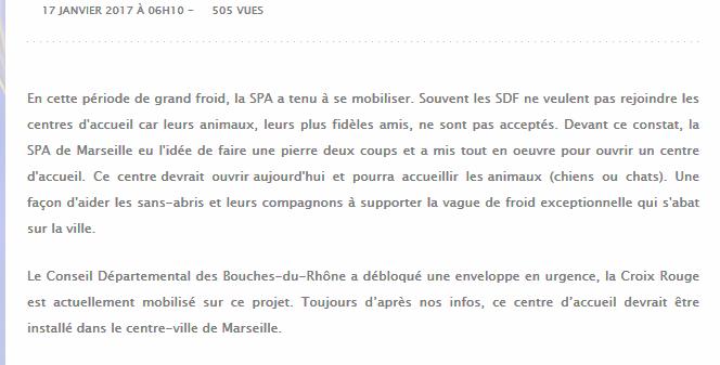 Marseille, ouverture d'un centre pour les SDF et leurs chiens Mrs110