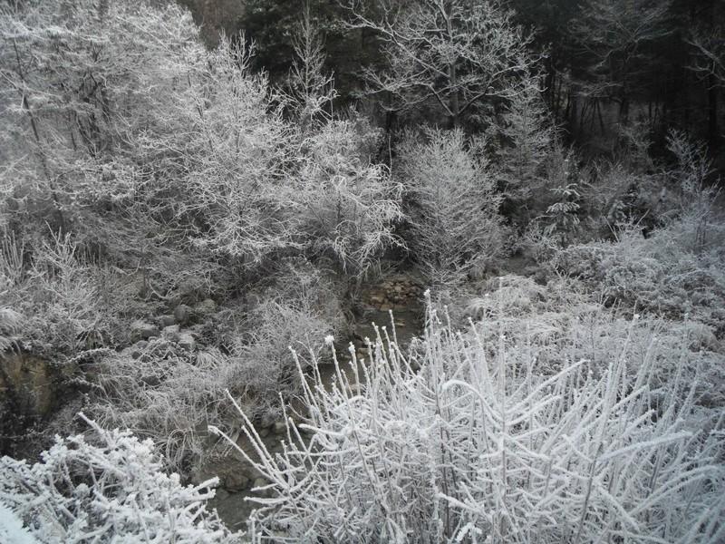 Coup de froid sur la Vaïre Dscf5214