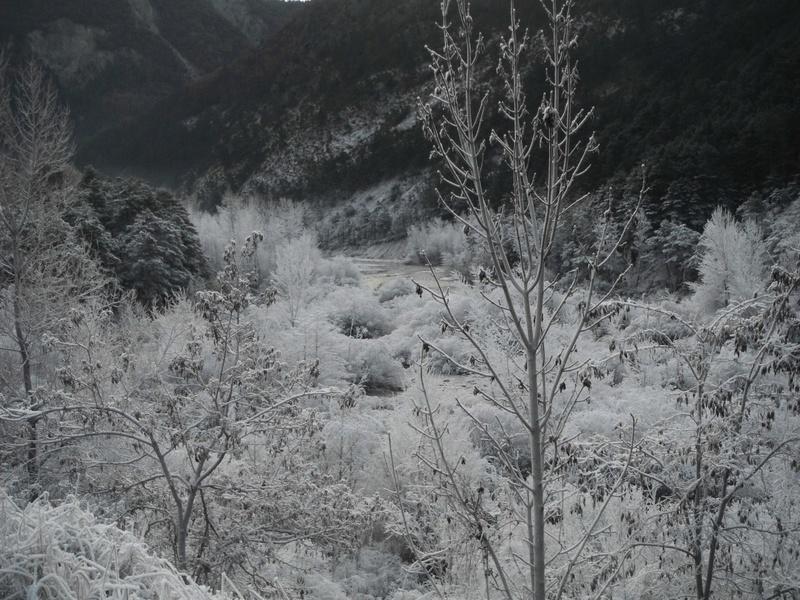 Coup de froid sur la Vaïre Dscf5215