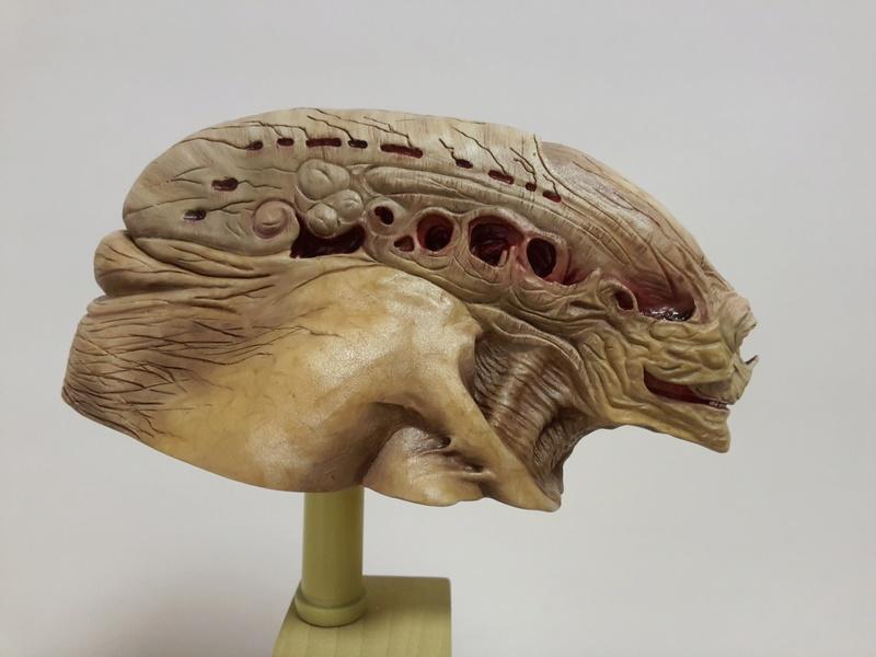 buste alien newborn 1/9 lamouline69 FINI !!! 20170215