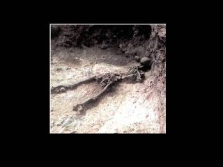 ~~Historia Antigua~~ Grecia: Periodo minoico Diapos43