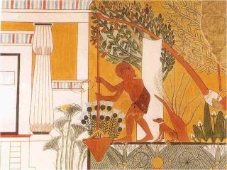 ~~Historia Antigua~~ Egipto: Economía y comercio Imagen36