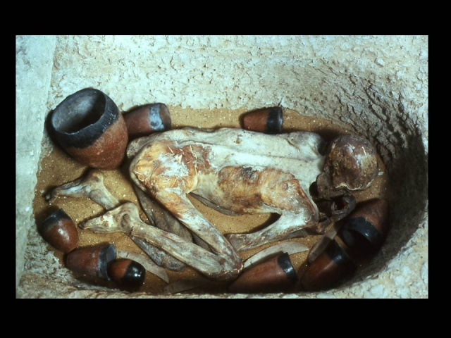 ~~Historia Antigua~~ Egipto: breve historia política Tumba_11