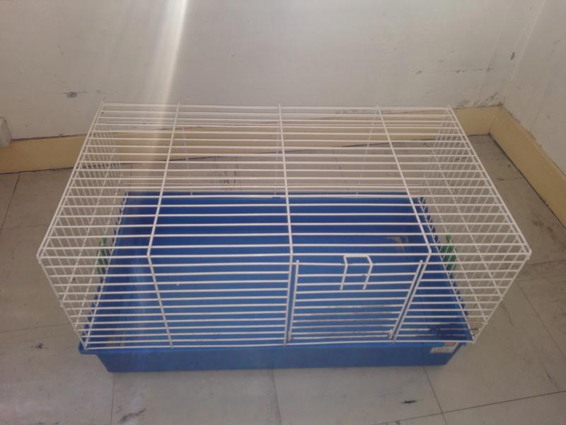 [VENDS] Plusieurs cages sur Paris Img_2021