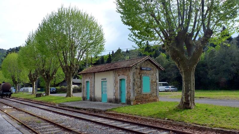 Train à vapeur des Cévennes 2016 P1100516