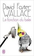 David Foster Wallace 41swmg10