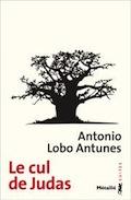 correspondances - Antonio Lobo Antunes  Image151