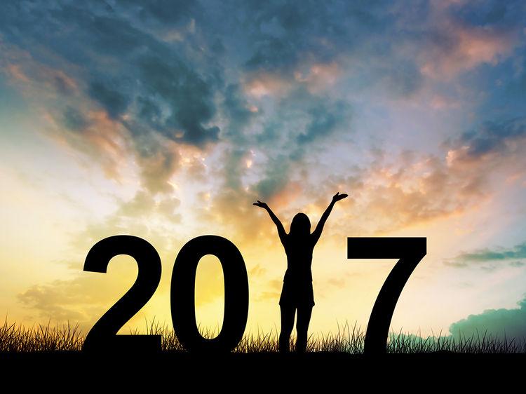 Bonnes résolutions  2017 201710
