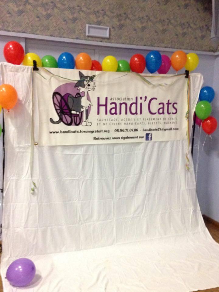 Première soirée en l'honneur de nos Handi'cats! 15978111