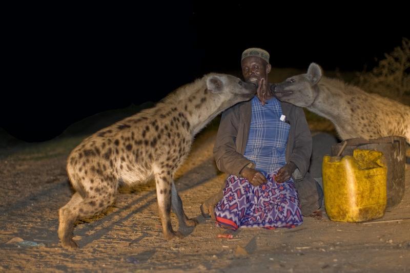 صور غريبة لرجل يطعم الضباع ويعيش معها Hijena10